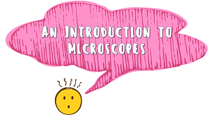 KS3 - An Introduction to Microscopes