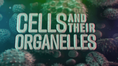 Science - Cells and Organelles-video